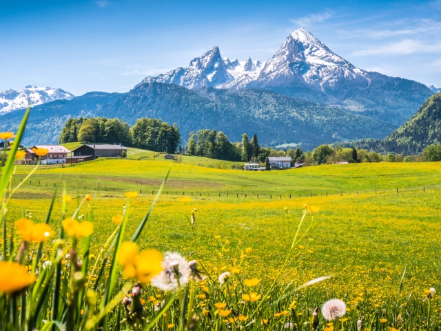 Nestlé-Wohlfühlstudie 2018: Regionalität im Trend