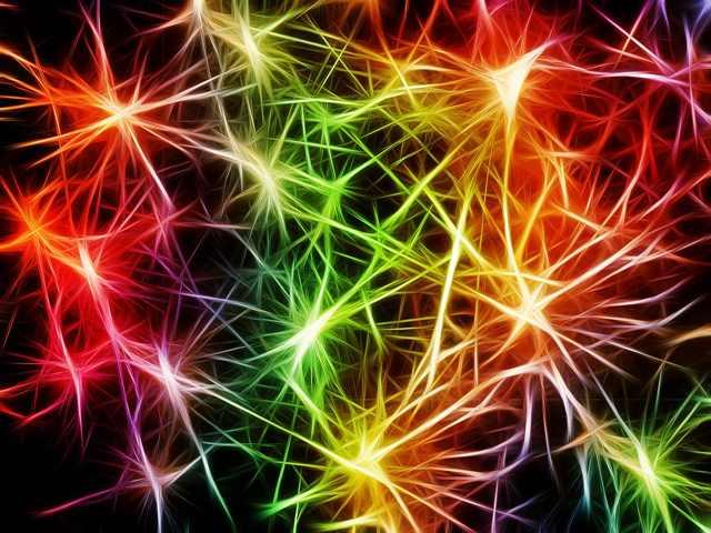 Optimierung des Gehirns